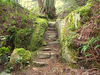 stairway-to-wilderness-hiking